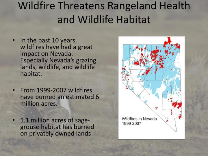 Wildfire Threatens Rangeland Health and Wildlife Habitat