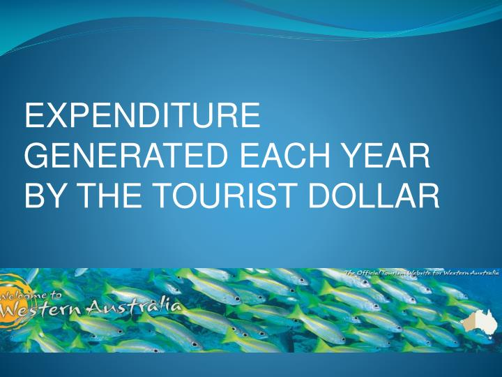 EXPENDITURE GENERATED EACH YEAR BY THE TOURIST DOLLAR