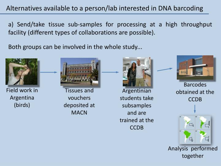 Alternatives available to a person/lab interested in DNA barcoding