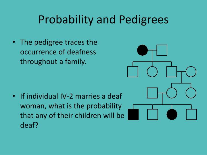 Probability and Pedigrees