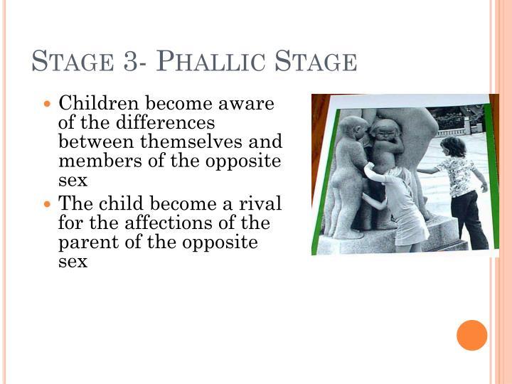 Stage 3- Phallic Stage