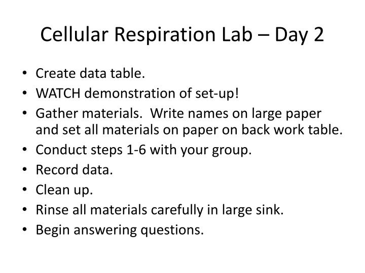 Cellular Respiration Lab – Day 2