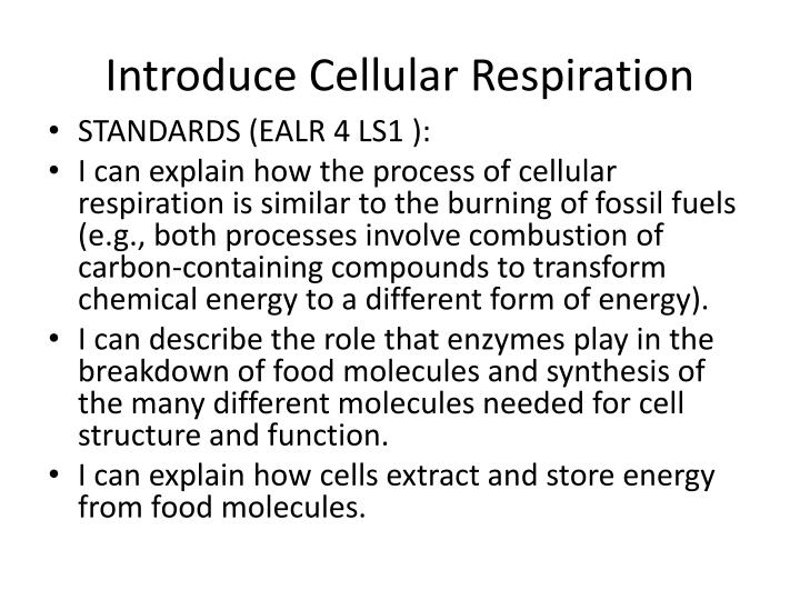 Introduce Cellular Respiration