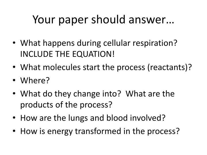 Your paper should answer…