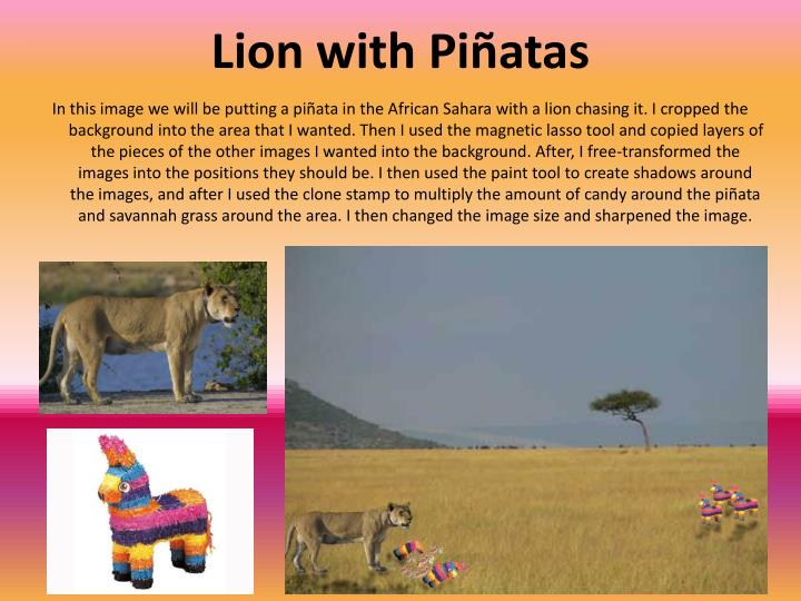 Lion with Piñatas