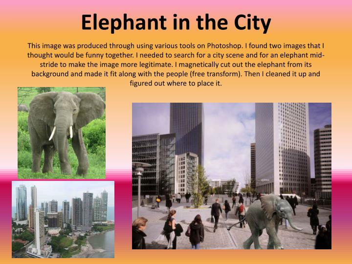 This image was produced through using various tools on Photoshop. I found two images that I thought would be funny together. I needed to search for a city scene and for an elephant mid-stride to make the image more legitimate. I magnetically cut out the elephant from its background and made it fit along with the people (free transform). Then I cleaned it up and figured out where to place it.