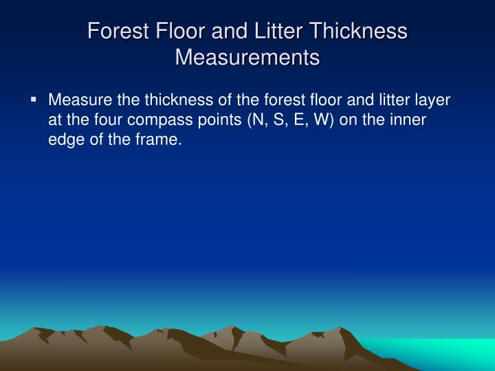 Forest Floor and Litter Thickness Measurements