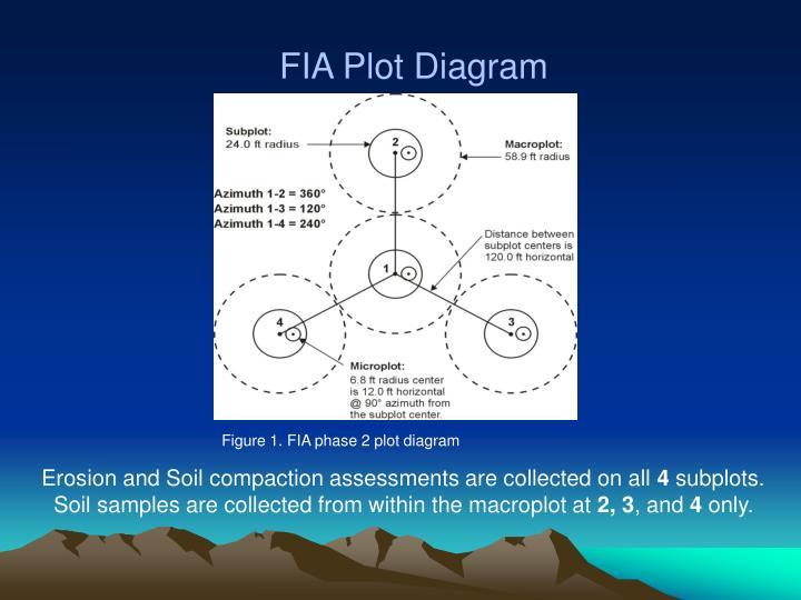 FIA Plot Diagram