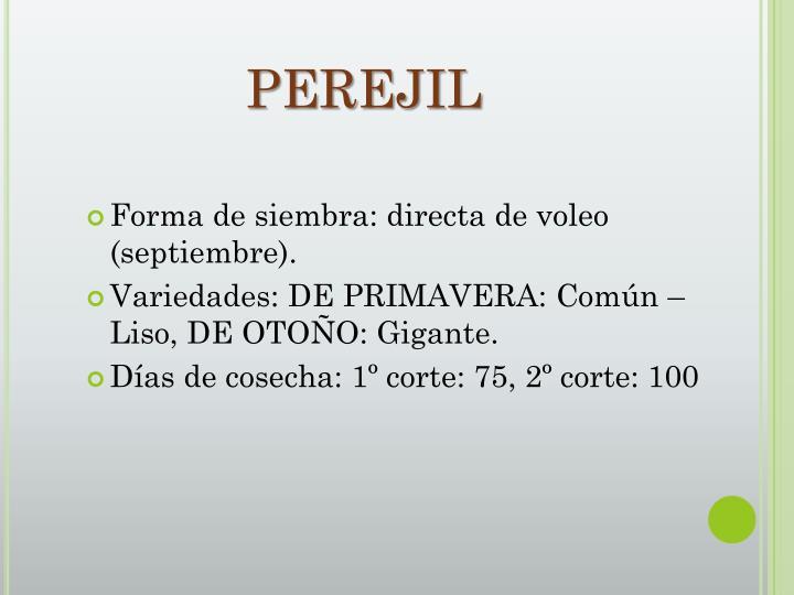 PEREJIL