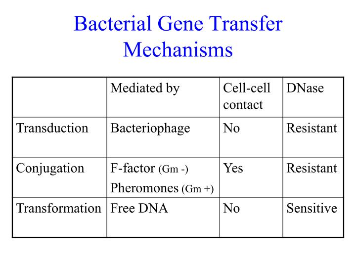 Bacterial Gene Transfer Mechanisms