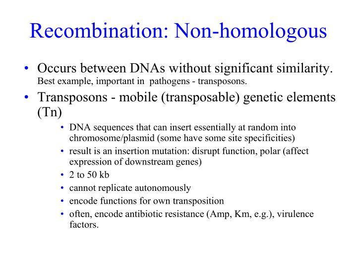 Recombination: Non-homologous