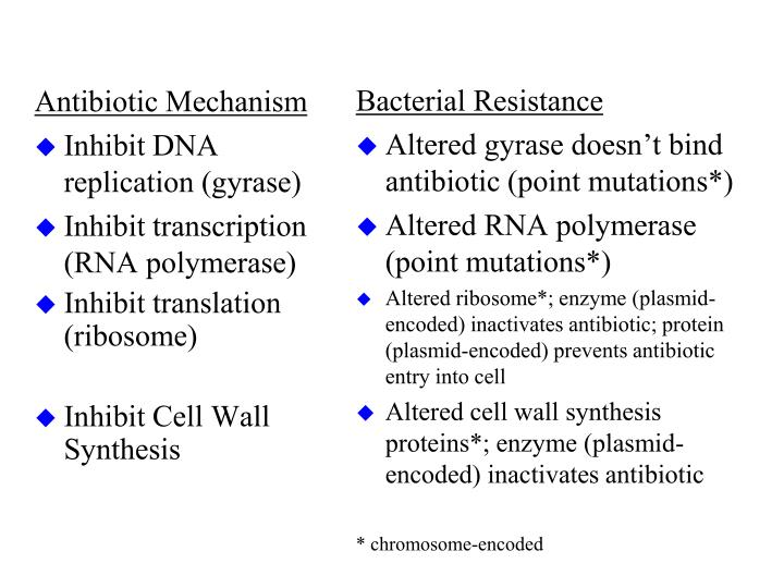 Antibiotic Mechanism