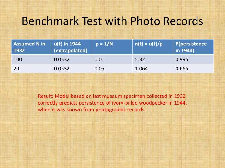 Benchmark Test with Photo Records