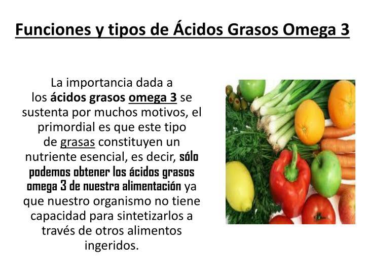 Funciones y tipos de Ácidos Grasos Omega 3