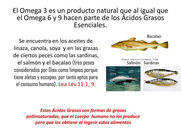 El Omega 3 es un producto natural que al igual que el Omega 6 y 9 hacen parte de los