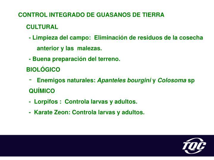 CONTROL INTEGRADO DE GUASANOS DE TIERRA