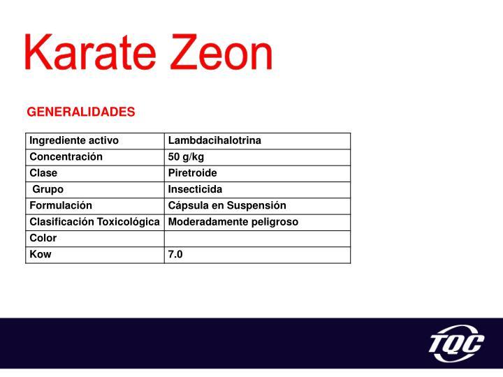 Karate Zeon