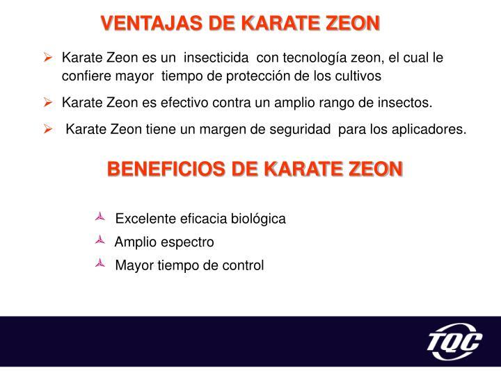 VENTAJAS DE KARATE ZEON