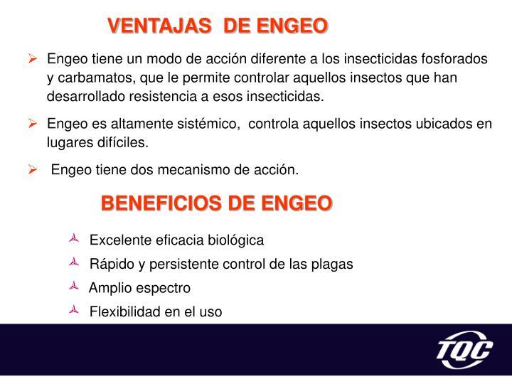 VENTAJAS  DE ENGEO