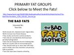 primary fat groups click below to meet the fats