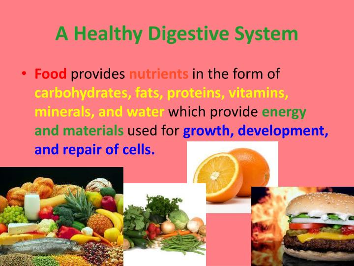 A Healthy Digestive System