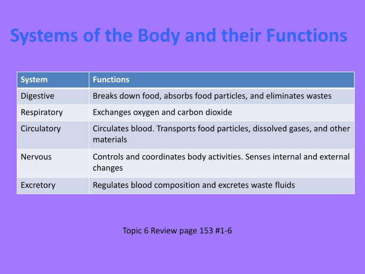 Systems of the Body and their Functions