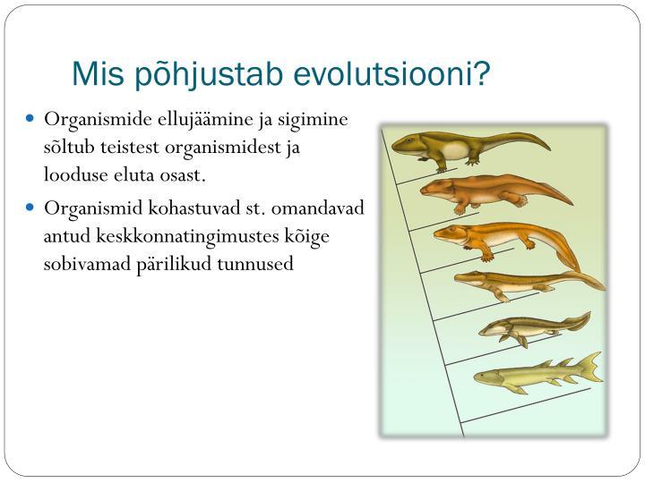 Mis põhjustab evolutsiooni?