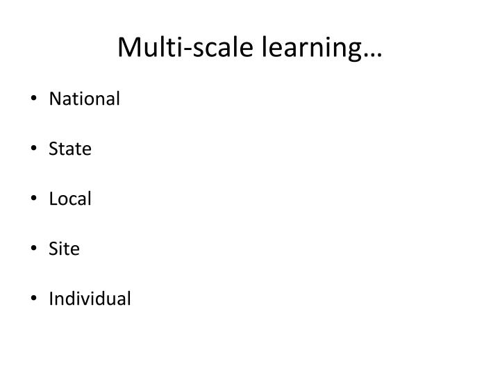 Multi-scale learning…