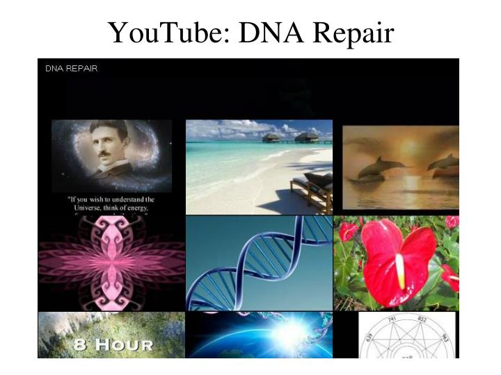 YouTube: DNA Repair