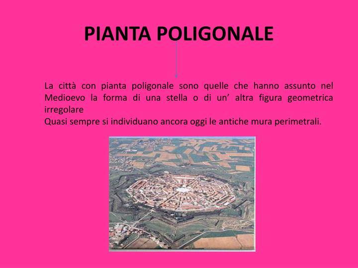 PIANTA POLIGONALE