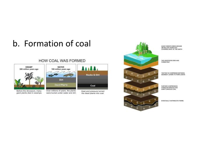b.  Formation of coal