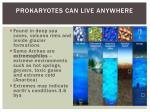 prokaryotes can live anywhere