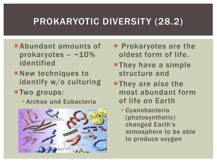 Prokaryotic Diversity (28.2)