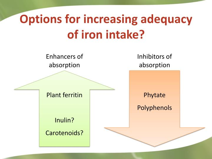 Options for increasing adequacy of iron intake?