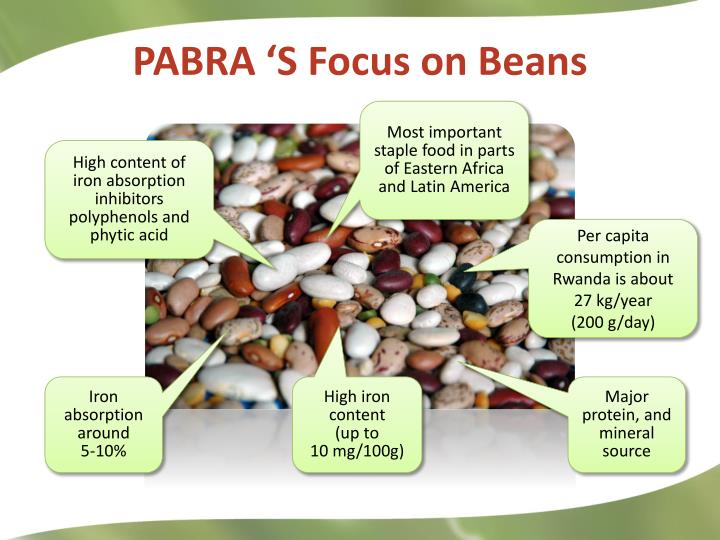 PABRA 'S Focus on Beans