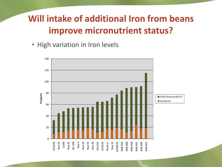 Will intake of additional Iron from beans improve micronutrient status?
