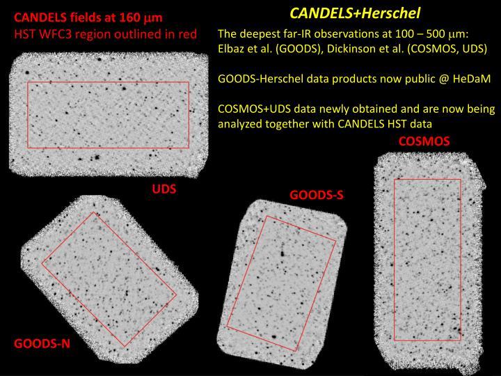 CANDELS+Herschel
