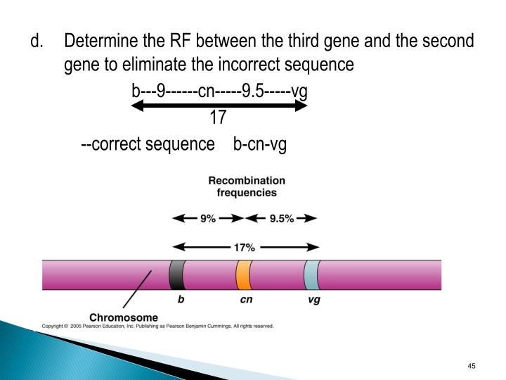 d.Determine the RF between the third gene and the second gene to eliminate the incorrect sequence