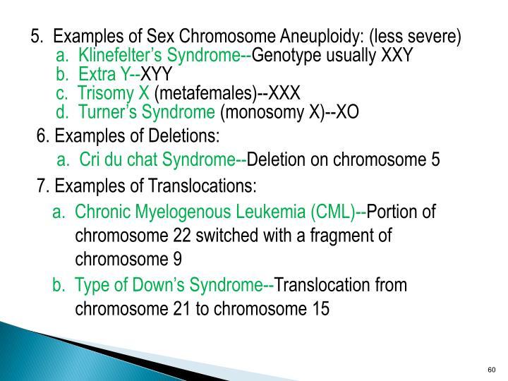 5.  Examples of Sex Chromosome