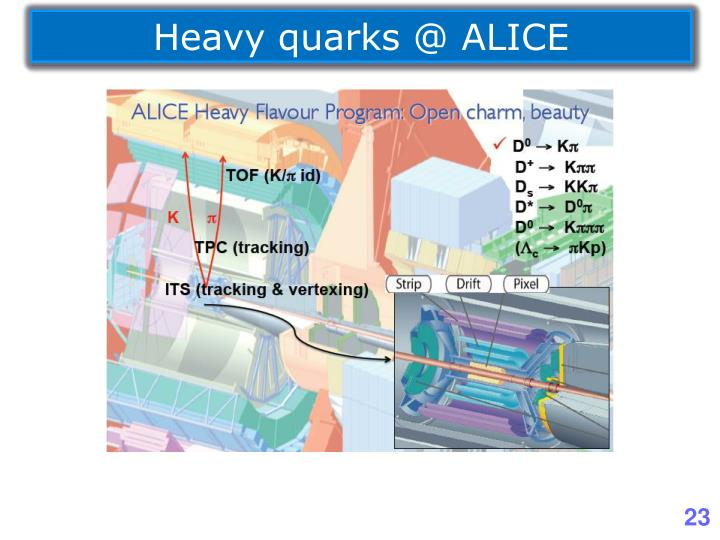 Heavy quarks @ ALICE