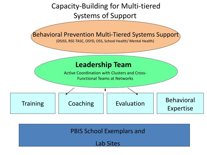 Capacity-Building for Multi-tiered Systems of Support