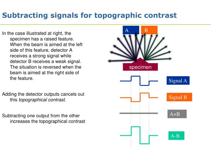 Subtracting signals for topographic contrast