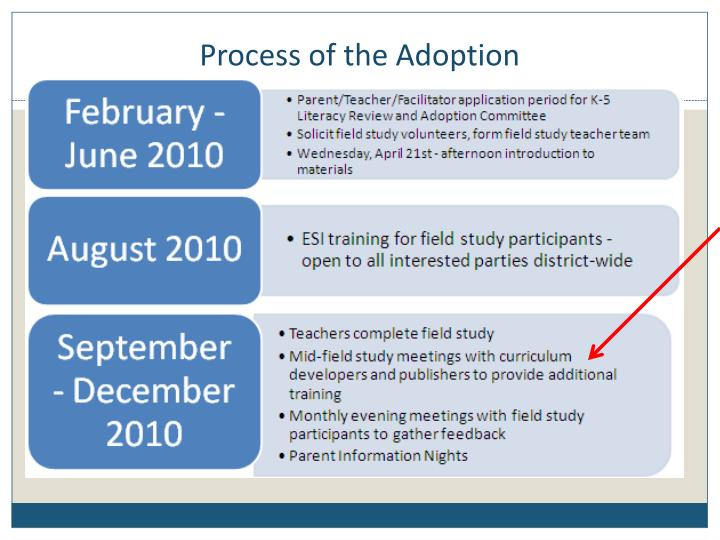 Process of the Adoption