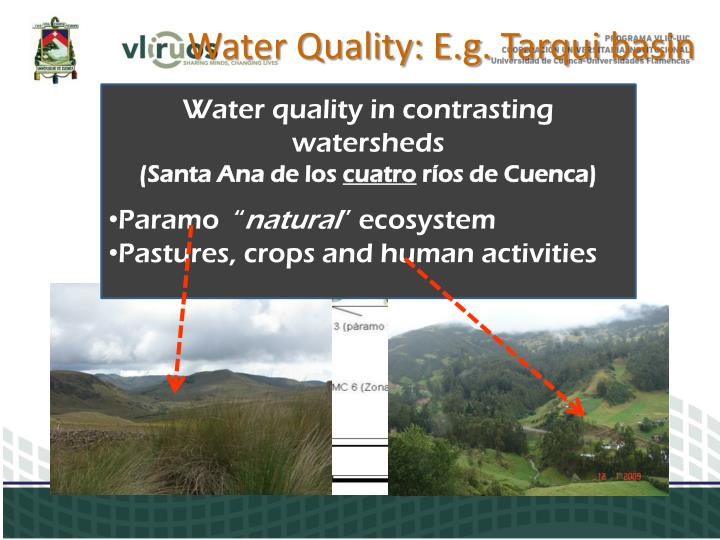 Water quality in contrasting watersheds