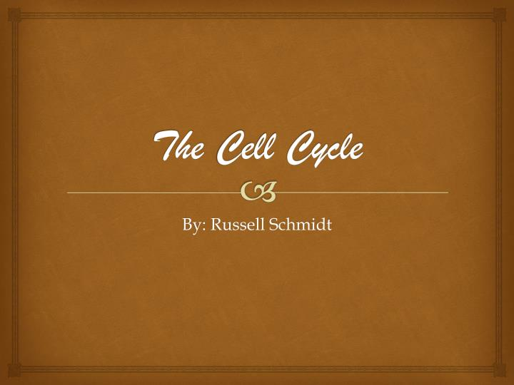 The c ell cycle