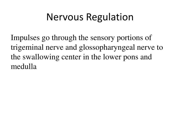 Nervous Regulation