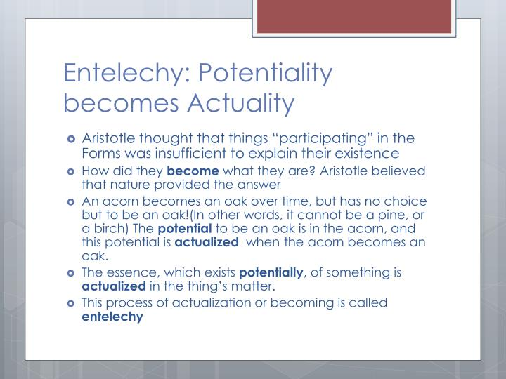 Entelechy: Potentiality becomes Actuality