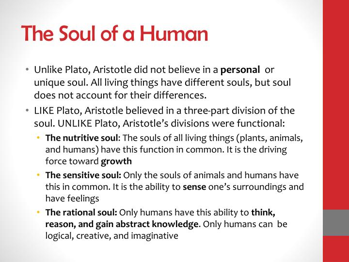 The Soul of a Human