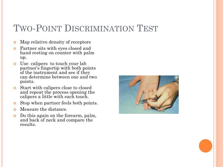 Two-Point Discrimination Test