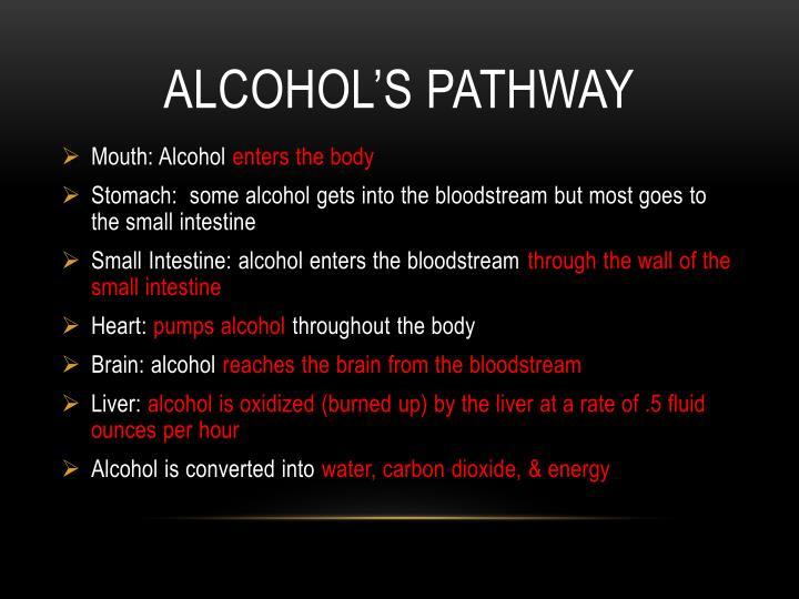 Alcohol's pathway